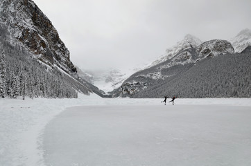 Lake Louise, ice skating
