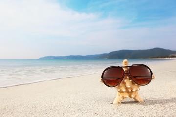 Starfish wearing glasses on beach