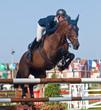 Obrazy na płótnie, fototapety, zdjęcia, fotoobrazy drukowane : Jinete a caballo saltando obstáculo