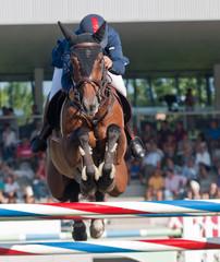 Jinete a caballo saltando obstáculo