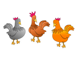 Poules and co q