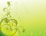 abstract flower Illustration vector spring summer green