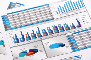Annual Report. Graph. Diagram. Chart. Analisys.