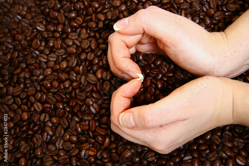 Heart shape with hands on coffee beans