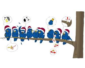 Bird, birds, tweet, Christmas, hat, tree,