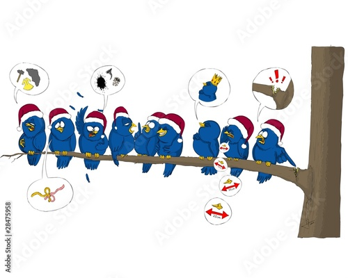 Bird, birds, tweet, Christmas, hat, tree,