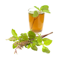 Holy Basil Tulsi Tea Ayurvedic Remedy