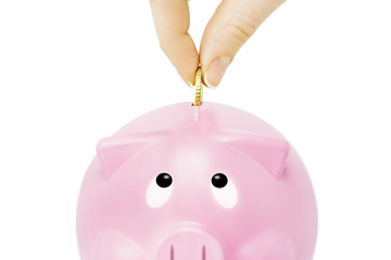 Savings -Piggy bank and hand with coin