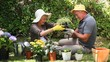 Aged couple gardening together
