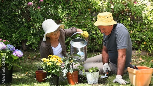 Old woman gardening with her husband
