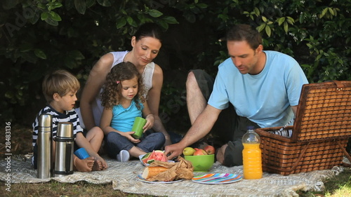 Family feasting at a picnic