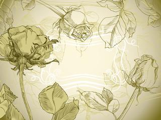 Vintage roses floral card, vector illustration