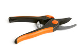 Open garden pruning shears