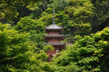 Mimurodo Temple in Kyoto,Japan