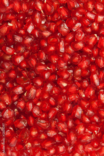 Background of red  seeds