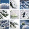 composition hiver neigeux
