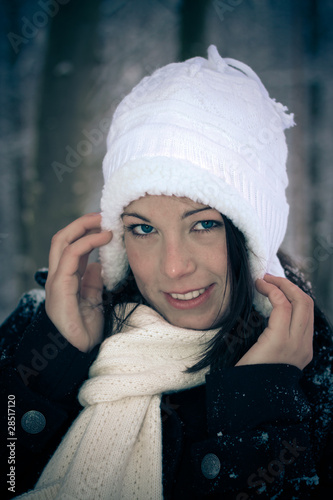 canvas print picture Winter
