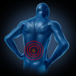 human lower back pain