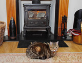Fireplace with blazing stove and a Tabby Cat sitting on a Rug poster