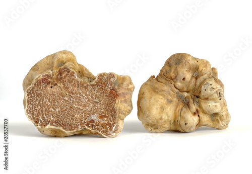 Leinwanddruck Bild white truffle