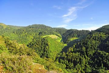 Schwarzwaldberge