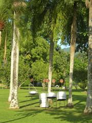 steel drums Royal Botanical Gardens Port of Spain Trinidad