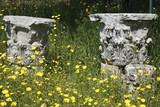 Classical Greek Corinthian capitals in springtime, Gortyna-Crete poster
