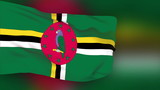 Dominica flag slowly waving. Blurred background. Seamless loop.