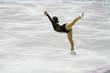pattinaggio su ghiaccio - 28543364