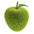 green grass apple