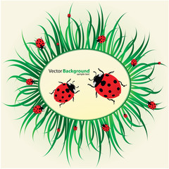 Spring background with ladybirds