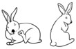 bunny outlines