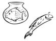 fishbowl & fish