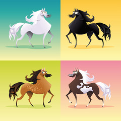 Family of horses. Vector isolated animal characters.
