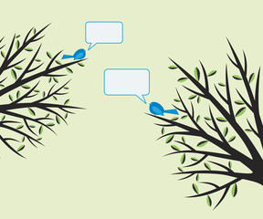 Birds chatting