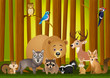 Funny animal cartoon
