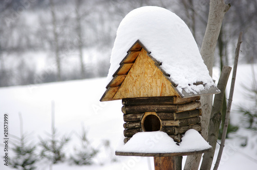 Birdbox under snow during the winter