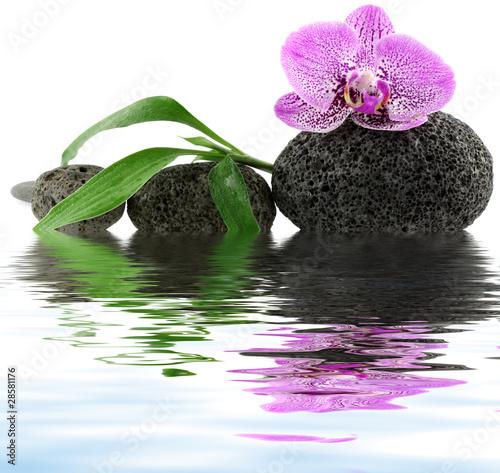 d cor zen massage orchid e galets et bambou stock. Black Bedroom Furniture Sets. Home Design Ideas
