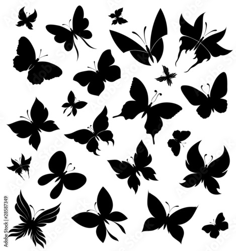 Set of butterflies - 28587349