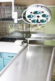 Veterinary operating room poster