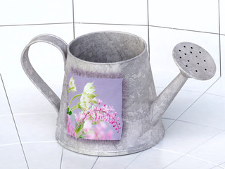 Isolated Watering-can in 3D