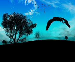 sfondo uccelli
