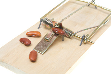 Mousetrap Baited with Beans, Accounting Joke Isolated Background