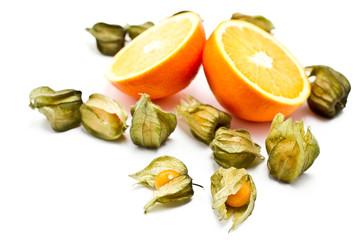 Orange, Physalis auf weißem Grund