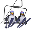 3d Penguins use the ski lift