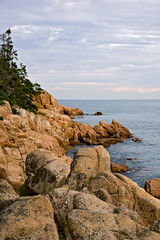 Bass Harbor Coast