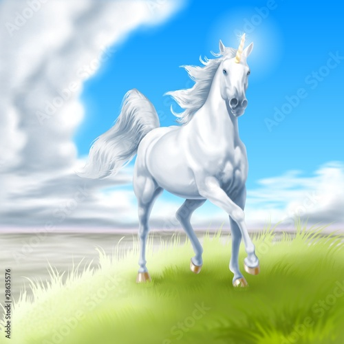 Poster Pony unicorno bianco