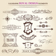 calligraphic elements vintage set. feather vector