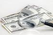 Dólares con lupa
