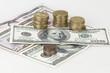 Grupo de Dólares con monedas